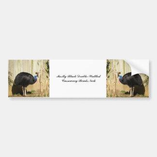 Mostly Black Double-Wattled Cassowary Bends Neck A Bumper Sticker