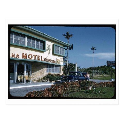 Motel, vintage de Miami Beach, la Florida Tarjeta Postal