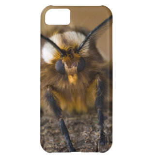 Moth iPhone 5C Covers
