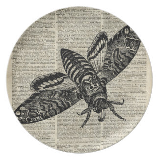 Moth Insect  Vintage Illustration on Old Book Page Melamine Plate