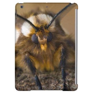 Moth iPad Air Covers