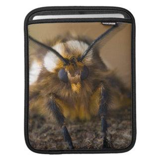 Moth iPad Sleeves