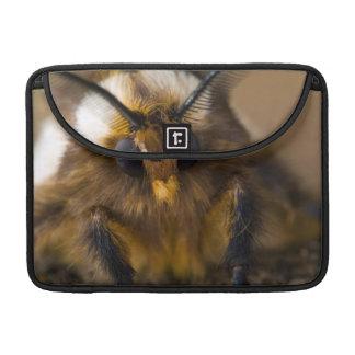 Moth Sleeves For MacBooks