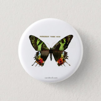 Moth: Madagascan Sunset Moth Pinback Button