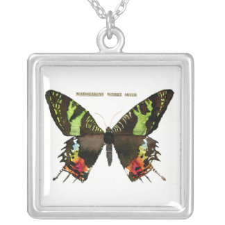 Moth: Madagascan Sunset Moth Square Pendant Necklace