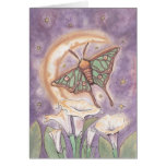 Moth & Moonflowers Greeting Cards