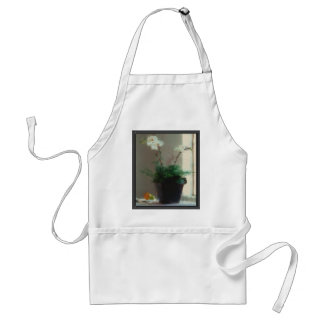 Moth Orchid in Window Adult Apron
