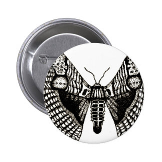 moth pins
