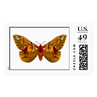 Moth Postage