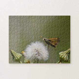 Moth Puzzle puzzle