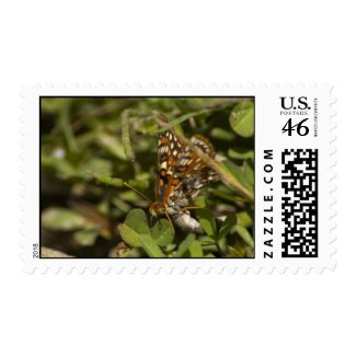 Moth Stamp 1 stamp