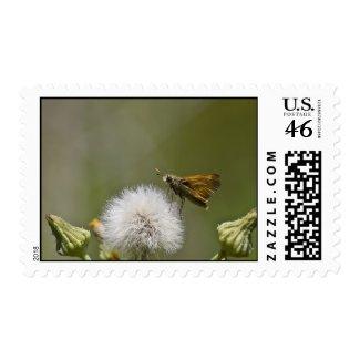 Moth Stamp 2 stamp