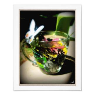 Moth Wing Tea Photo Print