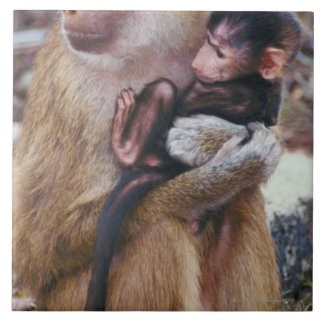 Mother and Baby Baboon Ceramic Tile