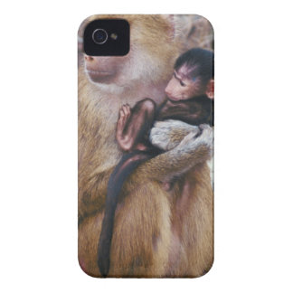 Mother and Baby Baboon iPhone 4 Case-Mate Case