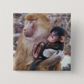 Mother and Baby Baboon Pinback Button
