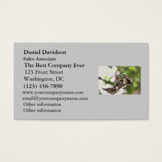 Mother and Baby Birds Business Card