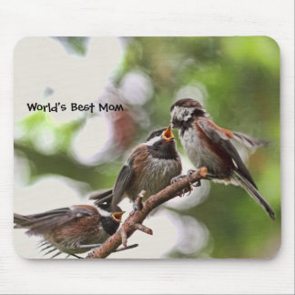 Mother and Baby Birds Mouse Pad