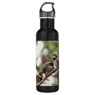 Mother and Baby Birds Water Bottle