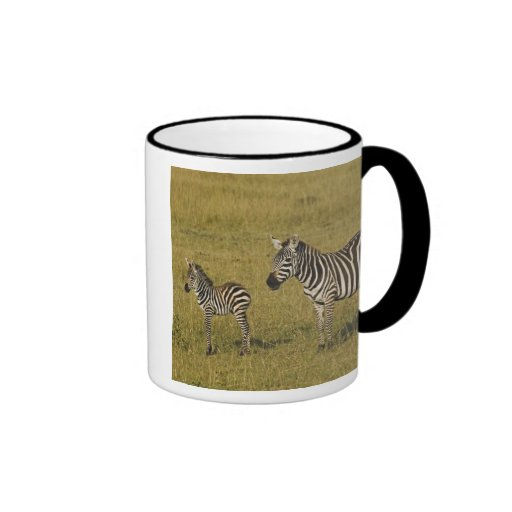 Mother and baby Burchell's Zebras, Equus Ringer Mug
