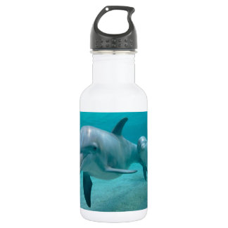 MOTHER AND BABY CALF DOLPHIN WATER BOTTLE