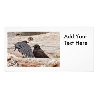 Mother and Baby Crow on a Beach Photo Greeting Card