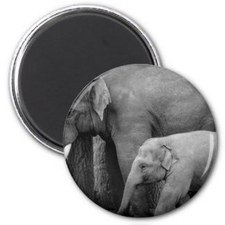 mother and baby elephant 2 inch round magnet