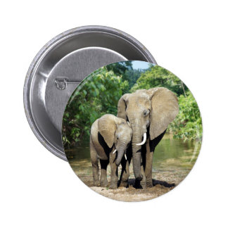 Mother And Baby Elephant Button