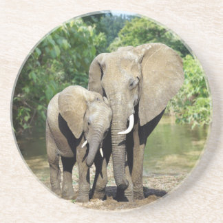 Mother And Baby Elephant Coasters