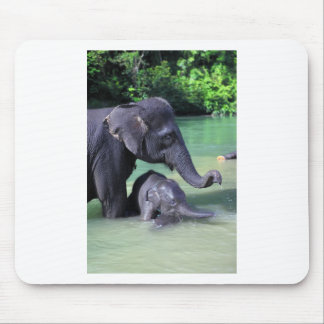 Mother and baby elephant in river mouse pad
