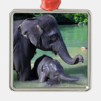 Mother and baby elephant in river christmas tree ornament