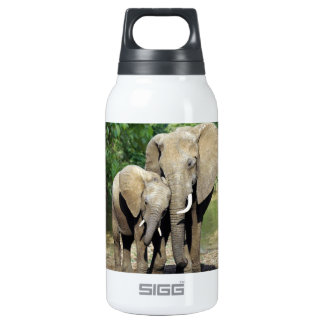 Mother And Baby Elephant Insulated Water Bottle