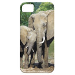 Mother And Baby Elephant iPhone 5 Covers