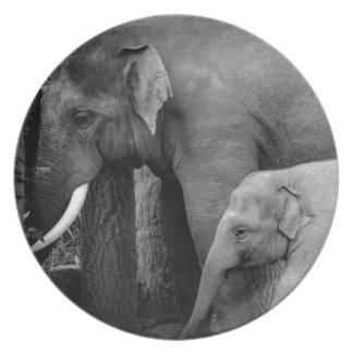mother and baby elephant plate