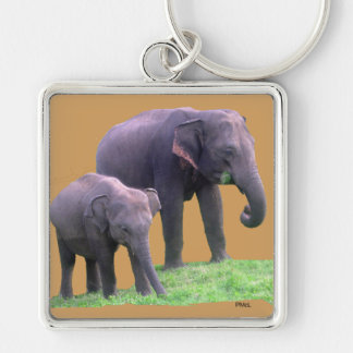 Mother and Baby Elephant, Premium Square Keychain