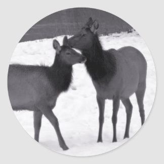 Mother And Baby Elk Classic Round Sticker
