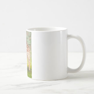 Mother and Baby Giraffes Classic White Coffee Mug