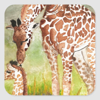 Mother and Baby Giraffes Square Sticker