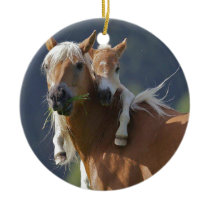 Mother and Baby Horse Ceramic Ornament