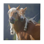 Mother and Baby Horse Ceramic Tile