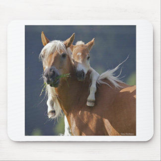 Mother and Baby Horse Mouse Pad