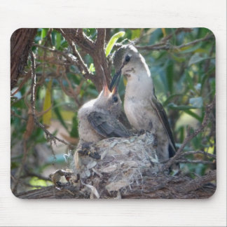 Mother And Baby Hummingbird Mouse Pad