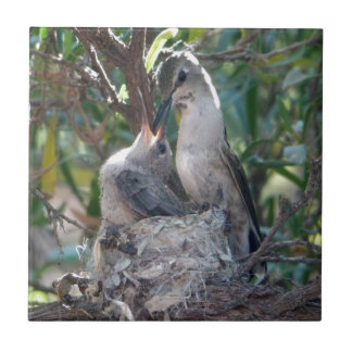Mother And Baby Hummingbird Ceramic Tile