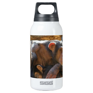 Mother and Baby Insulated Water Bottle