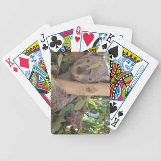 Mother and Baby Koala Bicycle Playing Cards