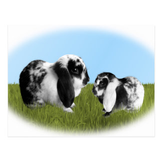 Mother and Baby Lop Eared Bunnies Postcard