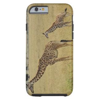 Mother and baby Masai Giraffe, Giraffa 2 Tough iPhone 6 Case