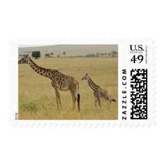 Mother and baby Masai Giraffe Giraffa 2 Stamps