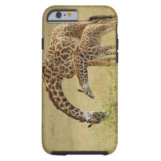 Mother and baby Masai Giraffe, Giraffa Tough iPhone 6 Case