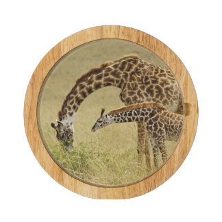 Mother and baby Masai Giraffe, Giraffa Cheese Board